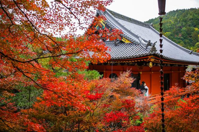 京都毘沙門堂の前撮り・フォトウェディング